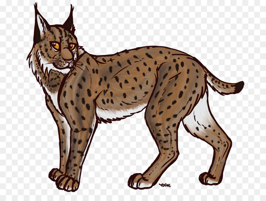 bobcat cartoon transparent background clipart Eurasian lynx Bobcat Felidae
