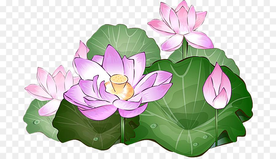 Download lotus flower clipart sacred lotus clip art flowerlotus download lotus flower clipart sacred lotus clip art flower lotus plant mightylinksfo