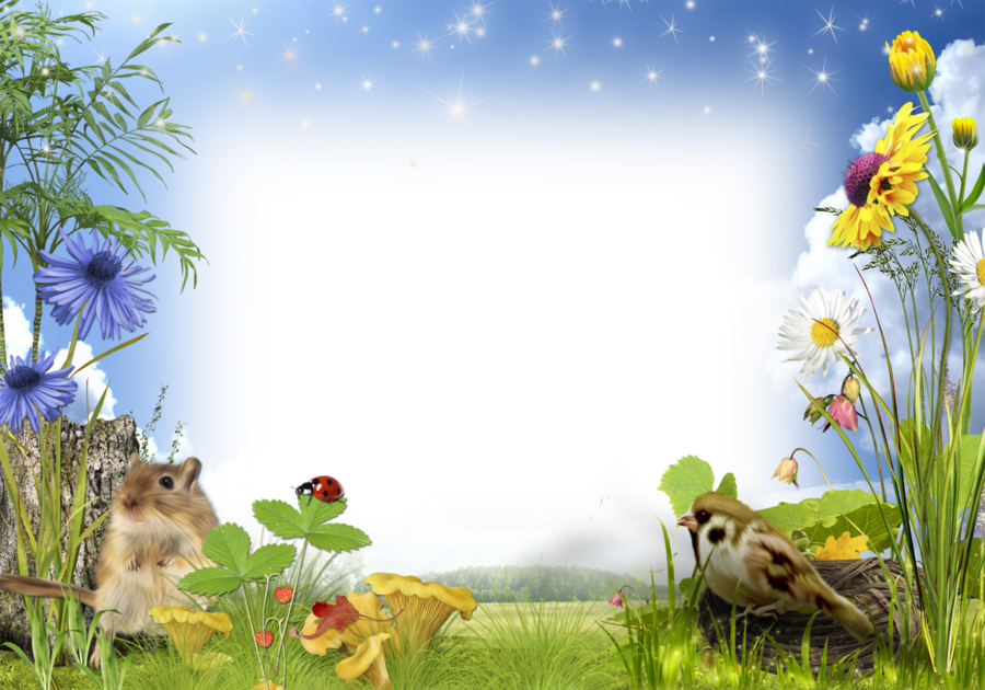 nature background frame clipart nature wildlife grass transparent clip art nature background frame clipart