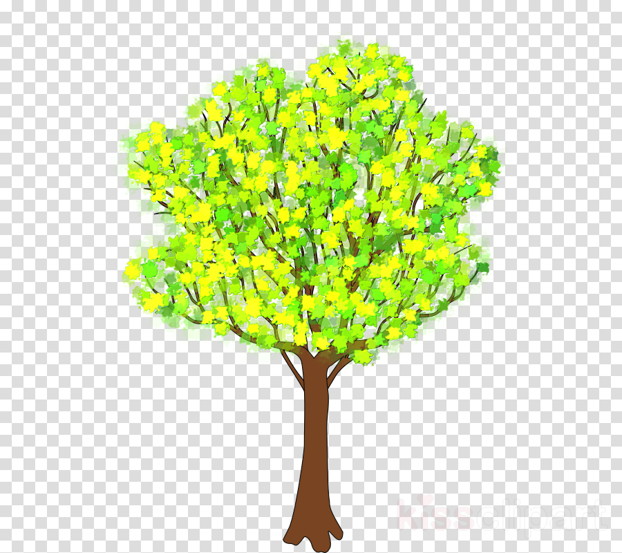 Tree Drawing Spring Transparent Png Image Clipart Free Download