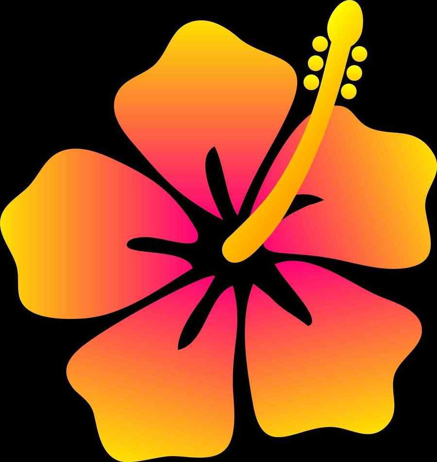 Download hawaiian flowers drawings clipart hawaii drawing clip art hawaiian flowers drawings clipart hawaii drawing clip art izmirmasajfo