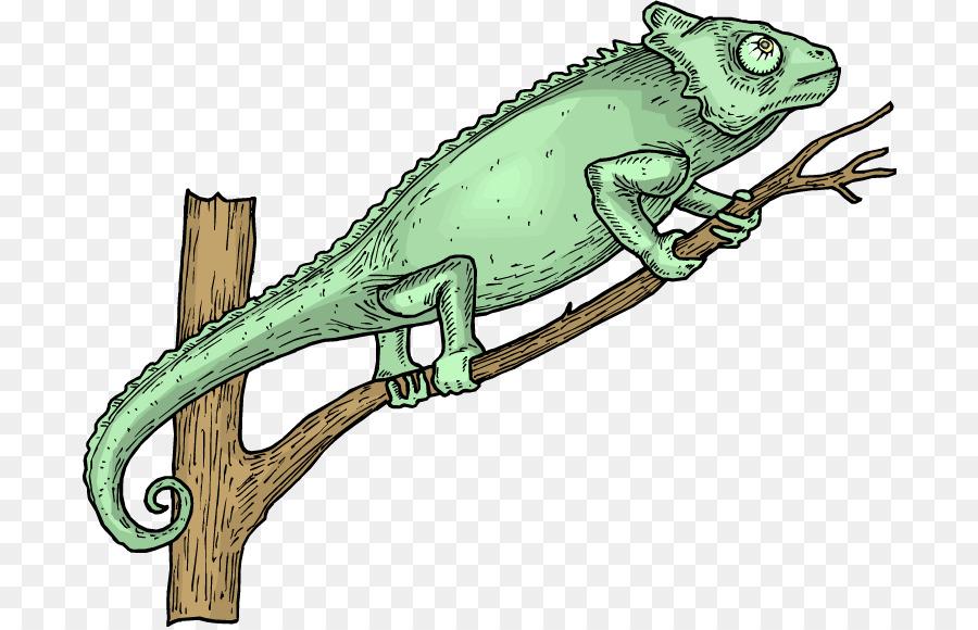 lizard tree clipart Lizard Chameleons Reptile