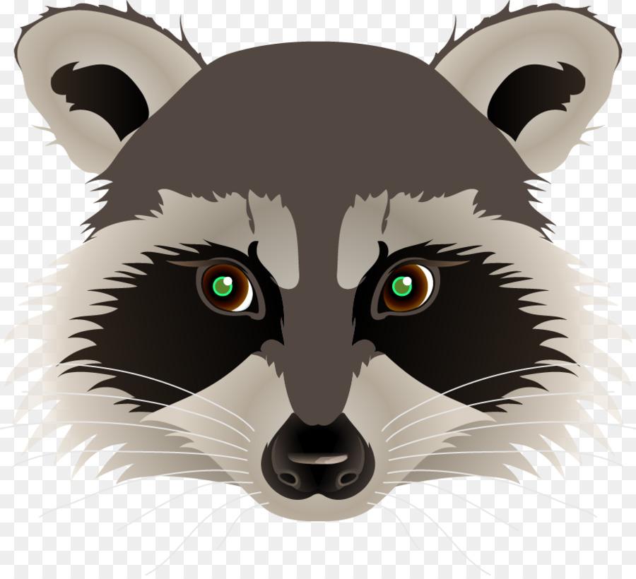 download raccoon face cartoon clipart raccoon giant panda clip art