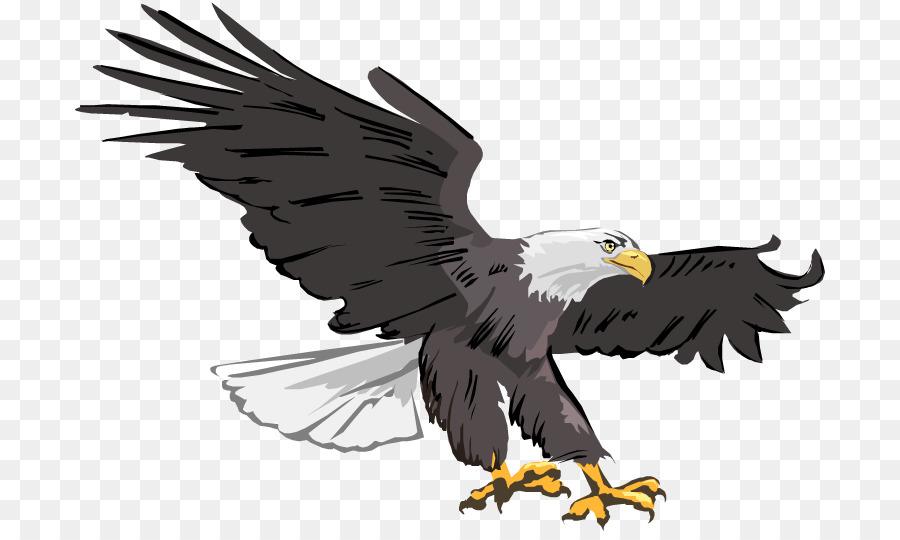 eagle vector clipart Bald eagle Clip art