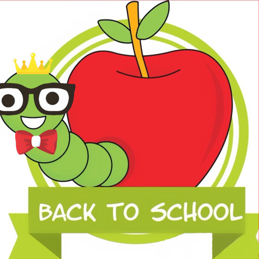 Back To School Green Background