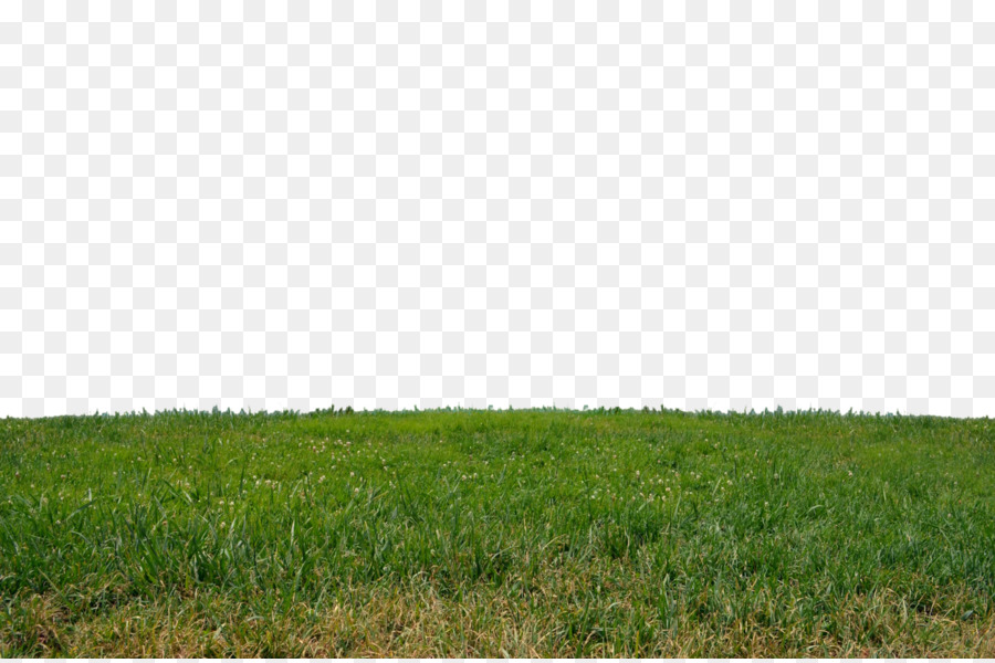 Graphics Grass Sky Transparent Png Image Clipart Free Download
