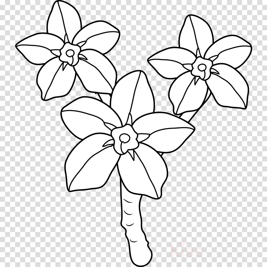 drawing flower white transparent image clipart free download Heart Clip Art drawing clipart floral design drawing clip art