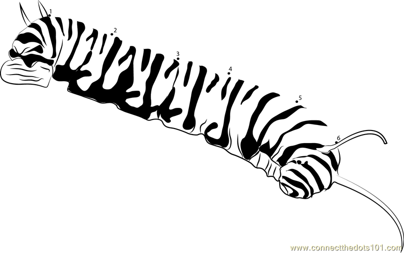 Download monarch caterpillar coloring page clipart Monarch butterfly ...
