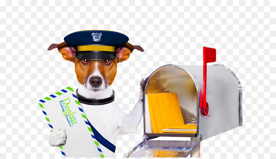 burg-wächter motiv briefkasten edelstahl design postbox postbote jack russel clipart Jack Russell Terrier Dog breed