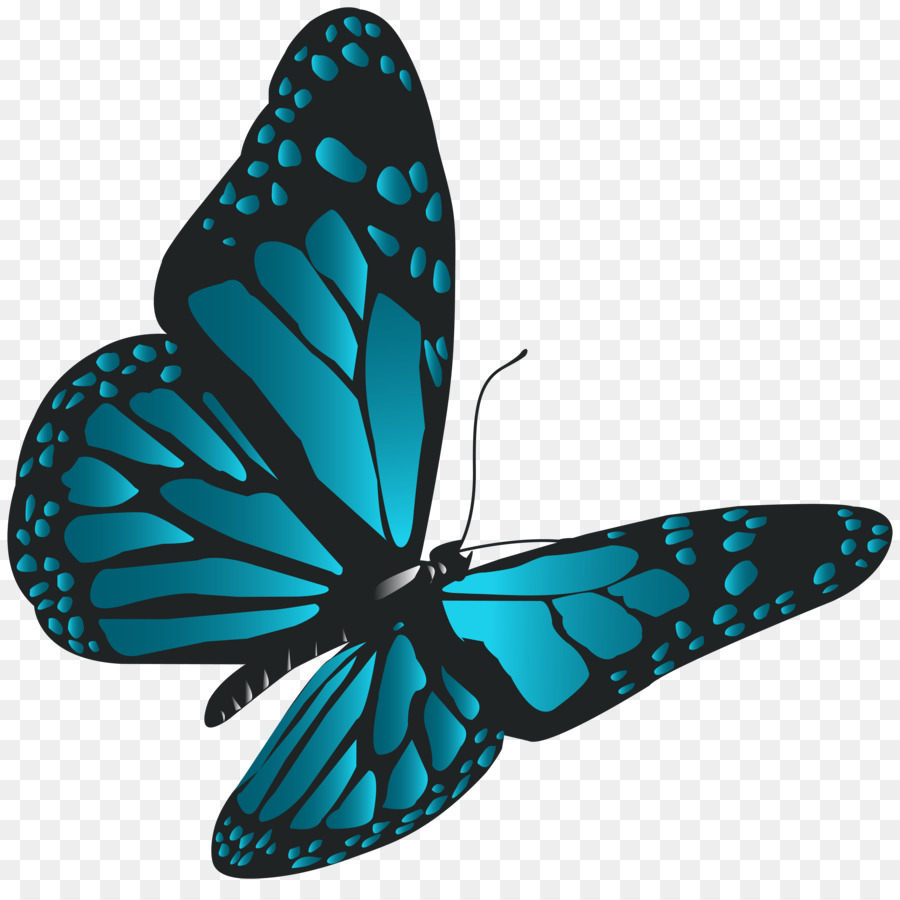 Butterfly clipart Monarch butterfly