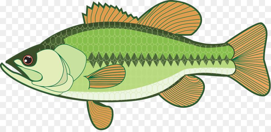 Fish bass. Fishing cartoon clipart graphics