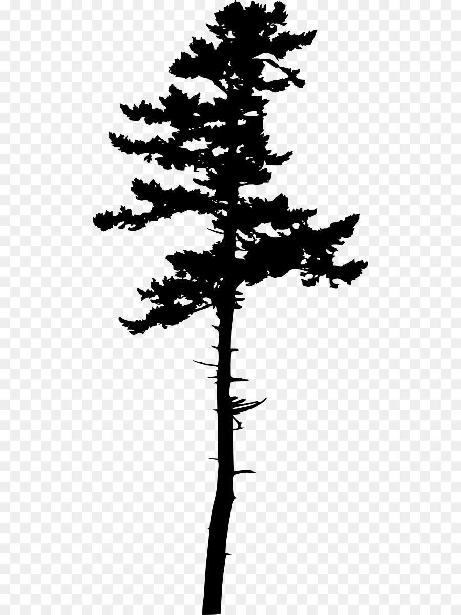 silhouette pine transparent clipart Silhouette Jack pine