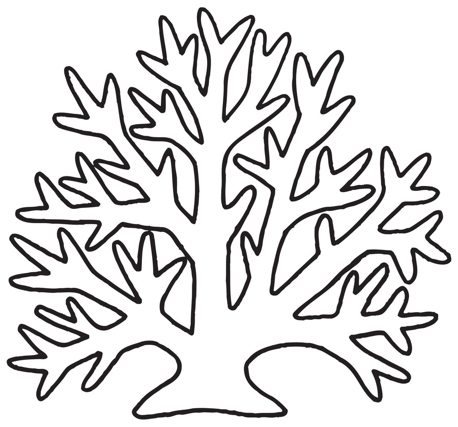 Coral Coloring Page Clipart Colouring Pages Book Reef
