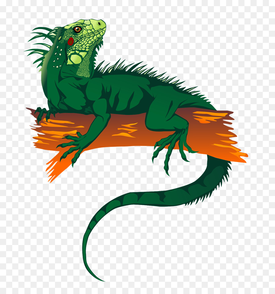 iguana art clipart Reptile Chameleons Lizard