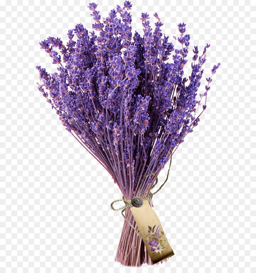 букет лаванды png clipart English lavender 干花