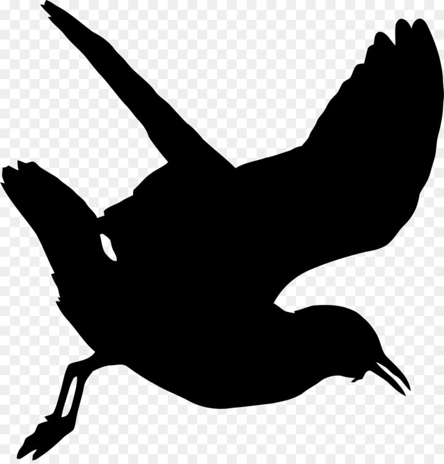 seagull silhouette clip art - 900×940