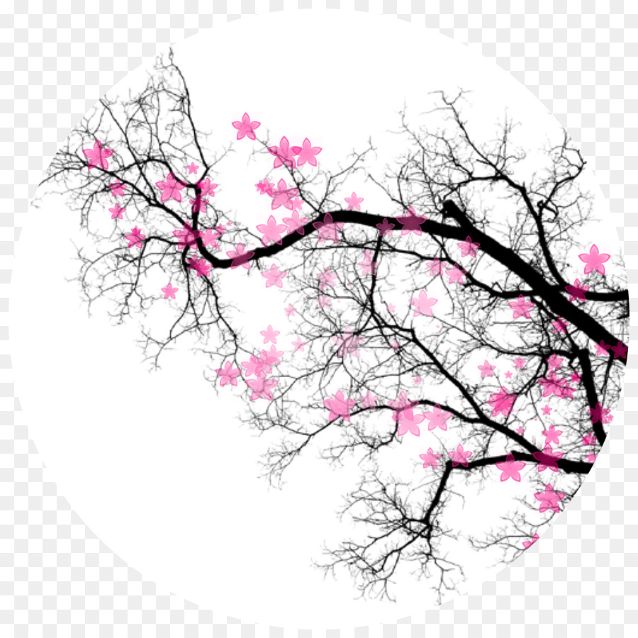 free tree borders clipart Cherry blossom