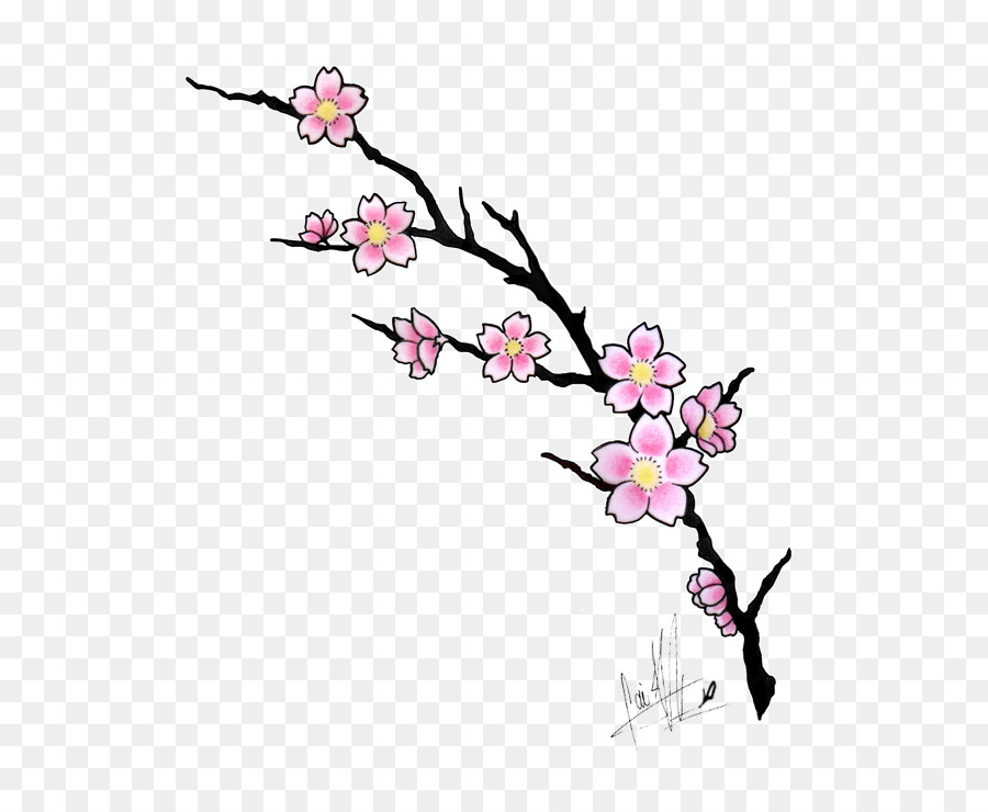Cherry Blossom Tree Drawing