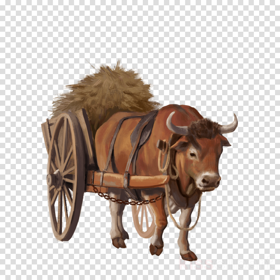 cattle clipart Cattle Ox Horse