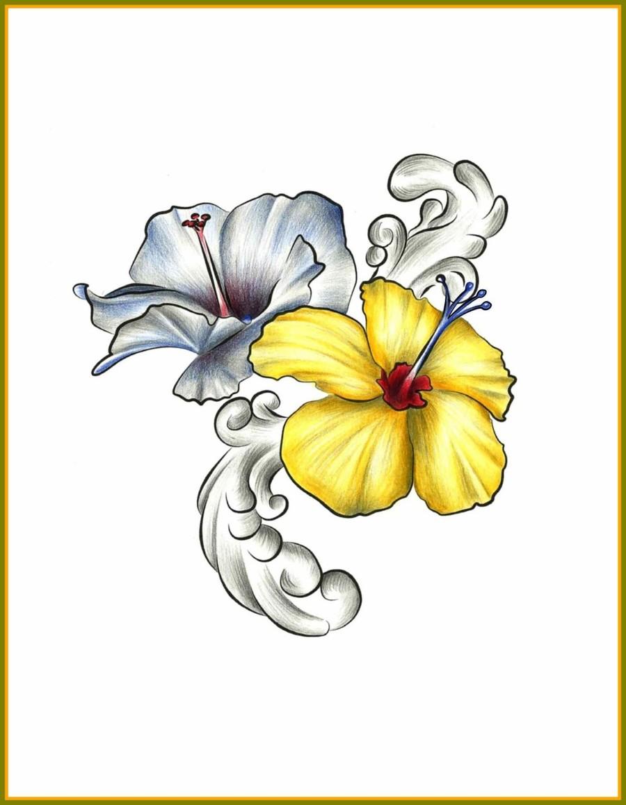 Download hawaiian flowers drawing clipart hawaii drawing watercolor hawaiian flowers drawing clipart hawaii drawing watercolor painting izmirmasajfo