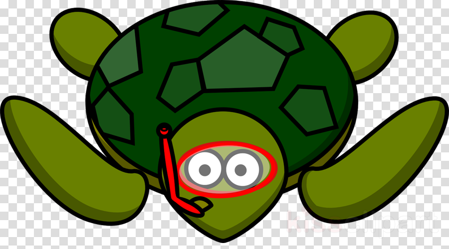 Turtle Cartoon Illustration Transparent Png Image Clipart Free