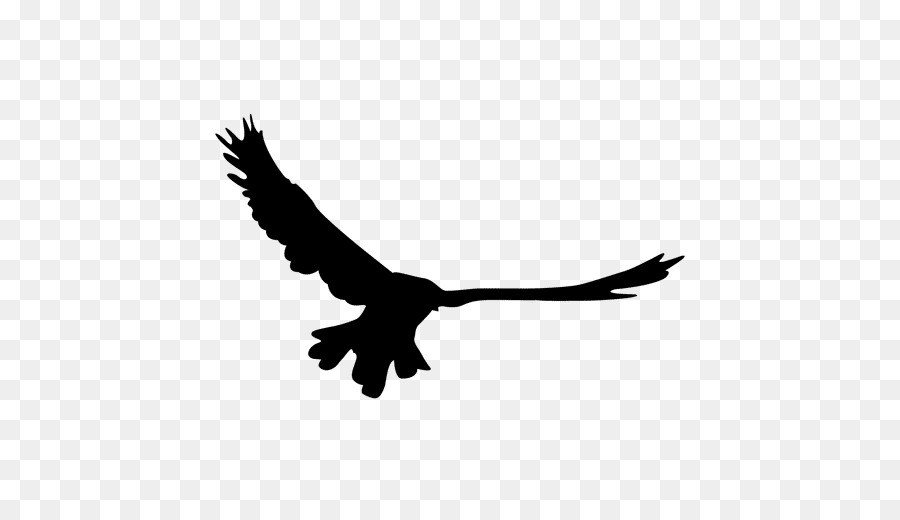 Bird, Eagle, Graphics, transparent png image & clipart free download