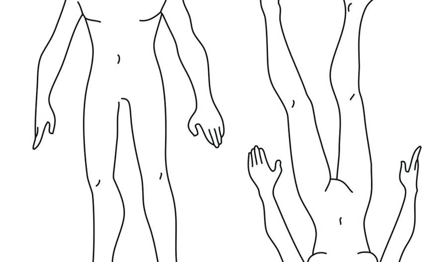 Download Male Body Template Clipart Finger Human Sketch