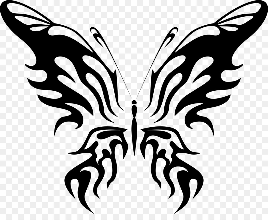 Butterfly Drawing Illustration Transparent Image Clipart