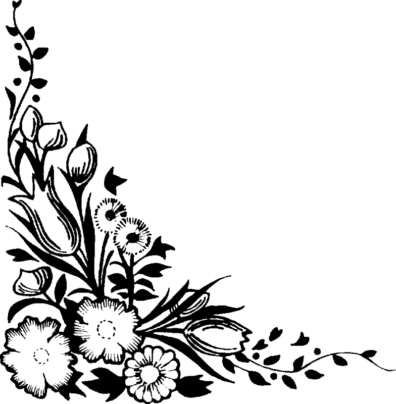 Moon Astrology Flower Transparent Image Clipart Free Download