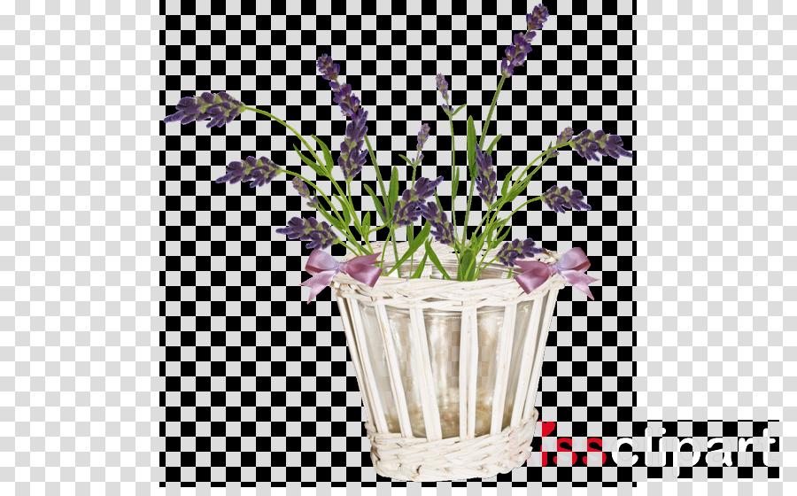lavender flowers png clipart Flower Clip art