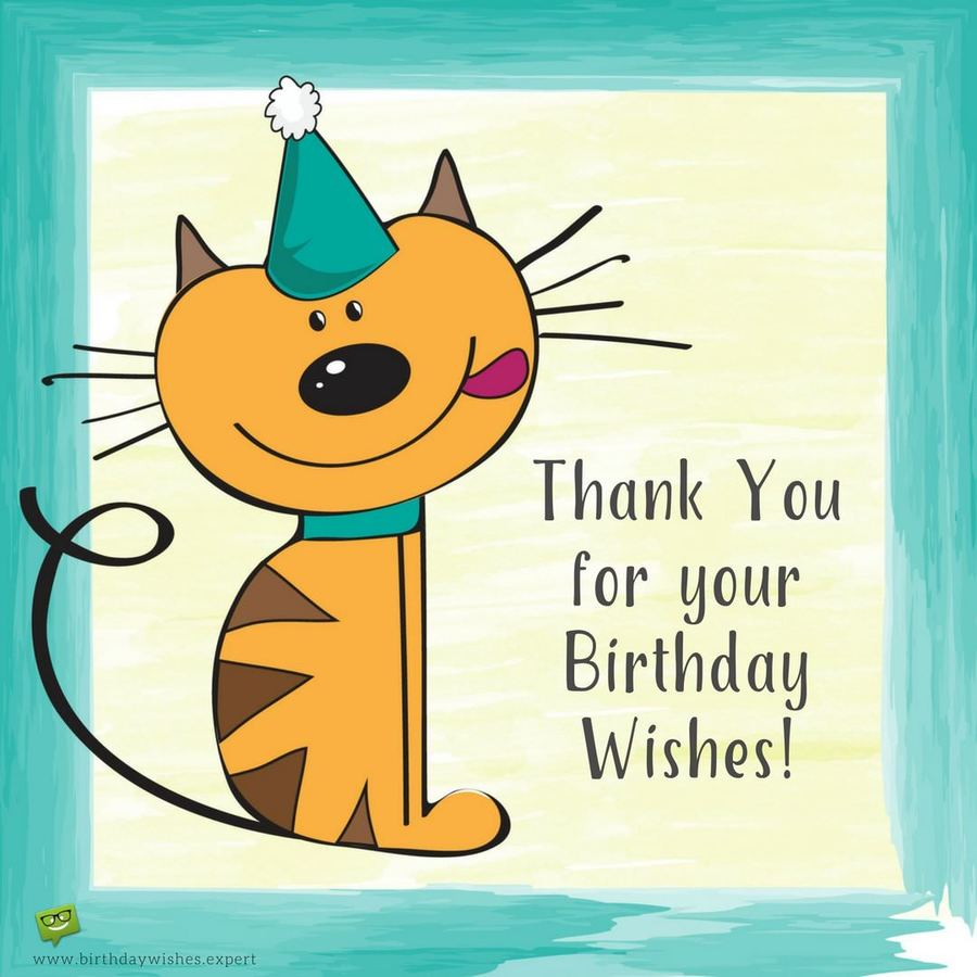 Birthday Cat Png Clipart Greeting Note Cards Wish