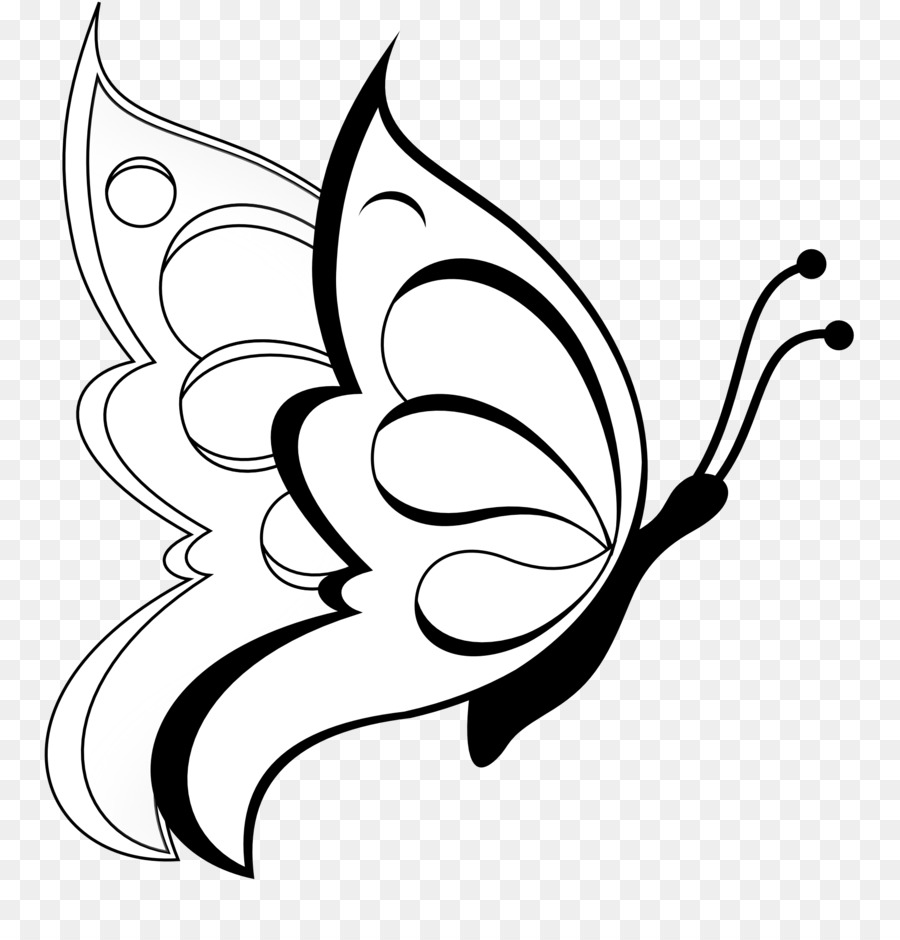 Butterfly black and white clipart drawing pencil