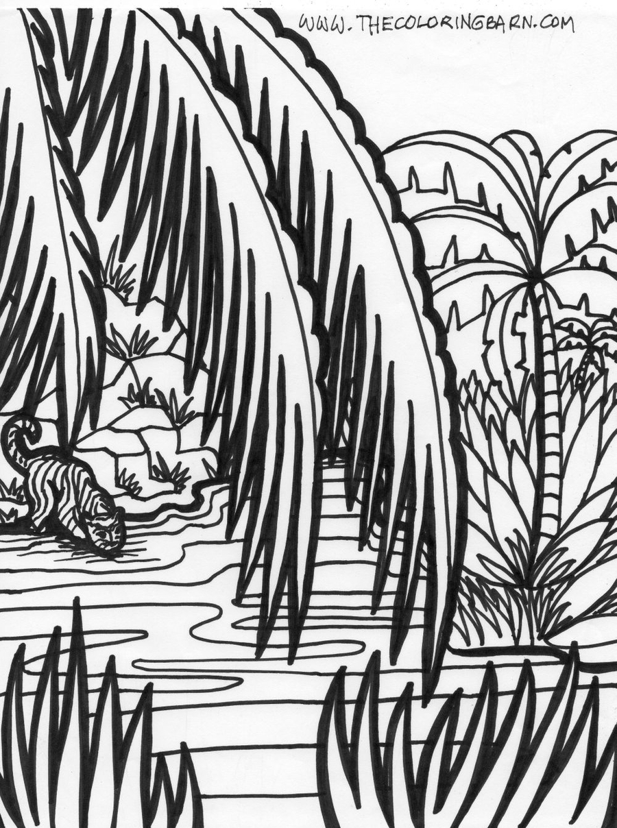 Jungle Scenes Coloring Pages Clipart Book Colouring