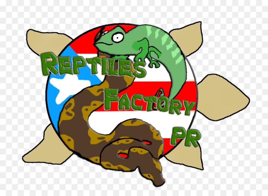 Turtle Cartoon