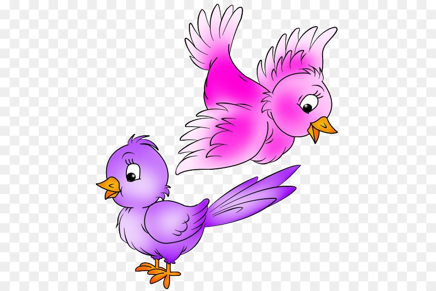 Bird Cartoon Parrot Transparent Png Image Clipart Free Download