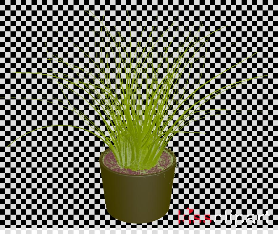 pot plant png clipart Flowerpot Houseplant