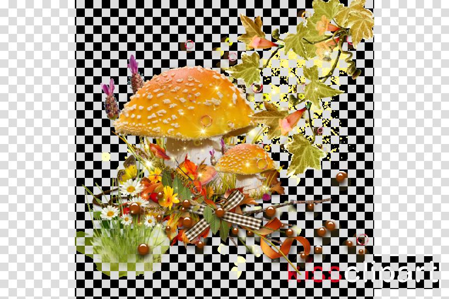 orange clipart Desktop Wallpaper Clip art