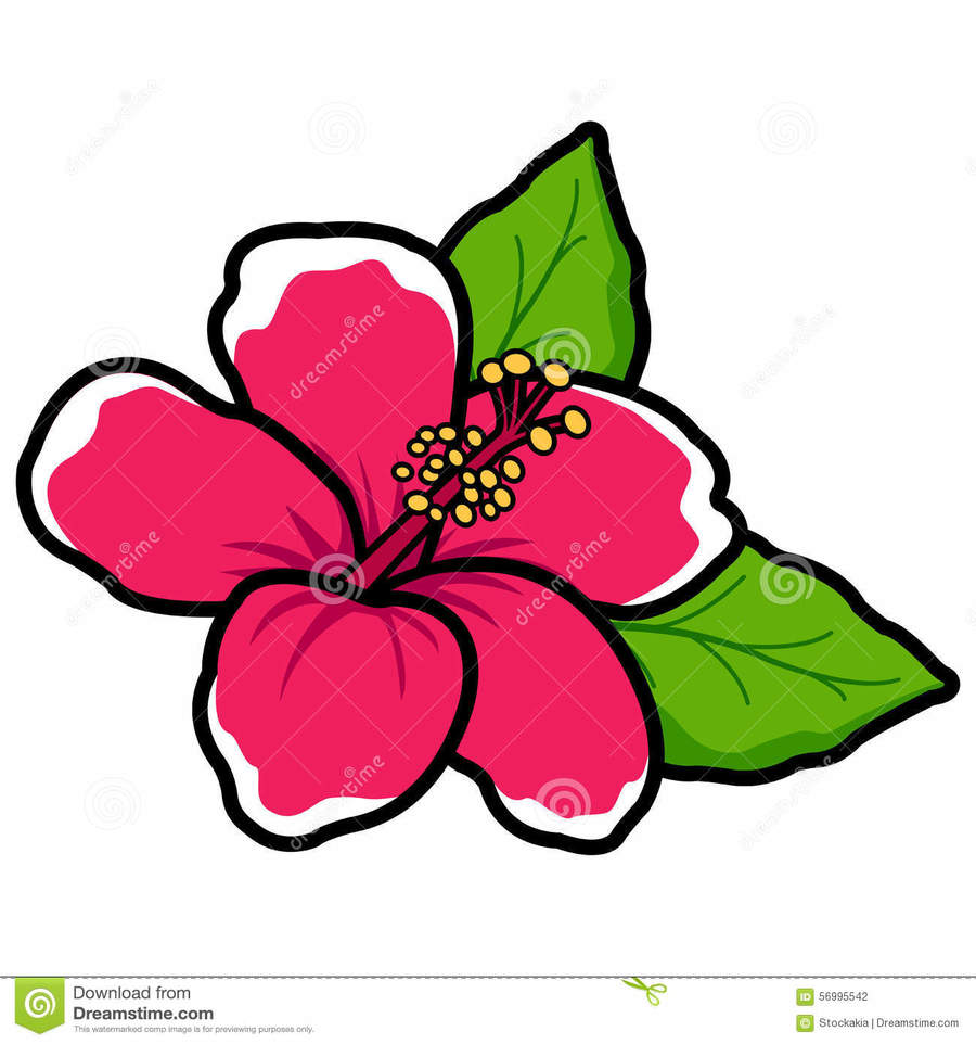 Download Cartoon Hibiscus Flower Clipart Drawing Hawaiian Hibiscus