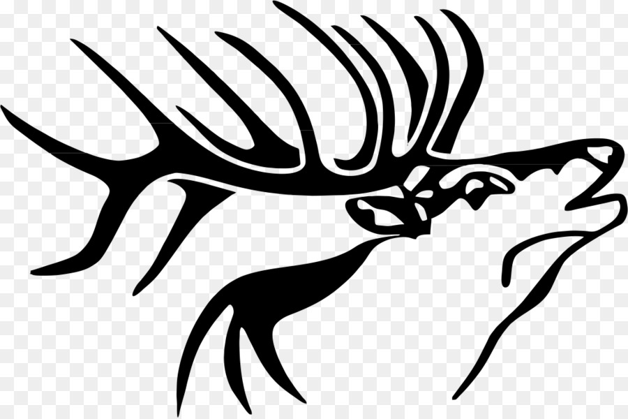 Deer Drawing Head Transparent Png Image Clipart Free Download