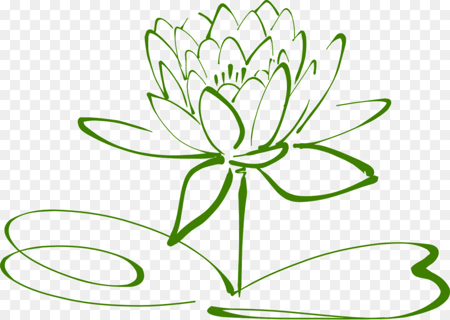 Flower Drawing Green Transparent Png Image Clipart Free Download