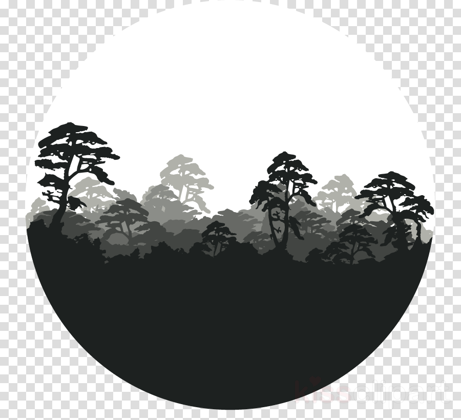 forest png clipart Forest