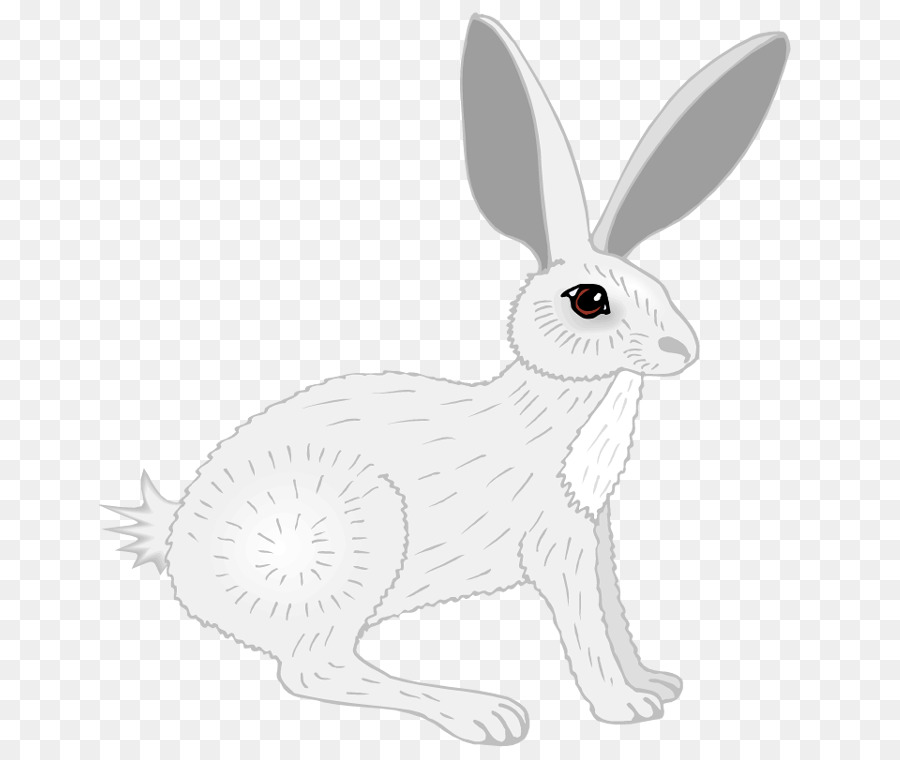 Rabbit Wildlife Transparent Image Clipart Free Download