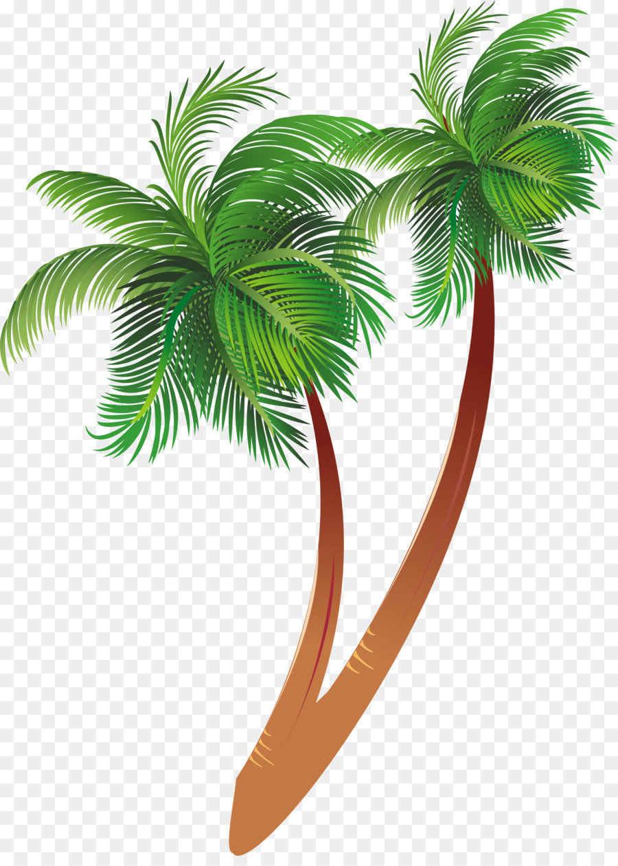 Coconut Tree Cartoon Transparent Png Image Clipart Free Download