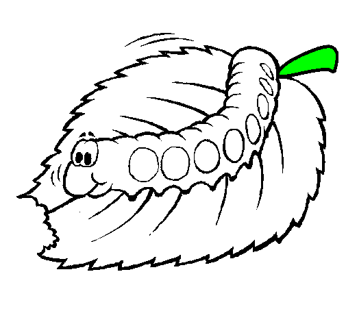 Butterfly Worm Drawing Transparent Image Clipart Free Download