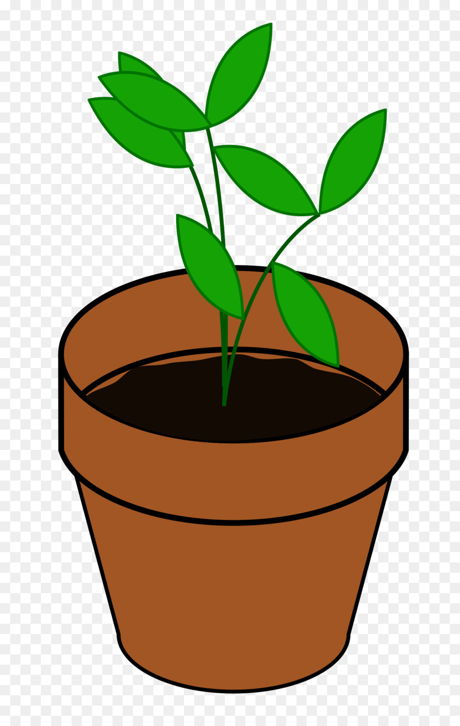 Plant cartoon. Tree clipart drawing plants