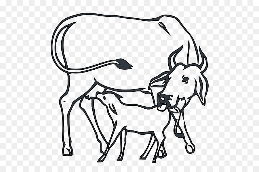 cow images black and white clipart Calf India Beef cattle
