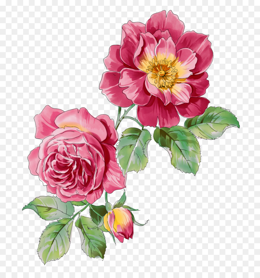 Watercolor Pink Flowers clipart - Flower, Painting, Rose