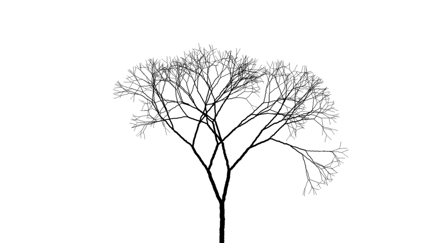 Drawing Tree Sketch Transparent Image Clipart Free Download
