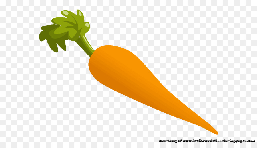 Vegetable Cartoon
