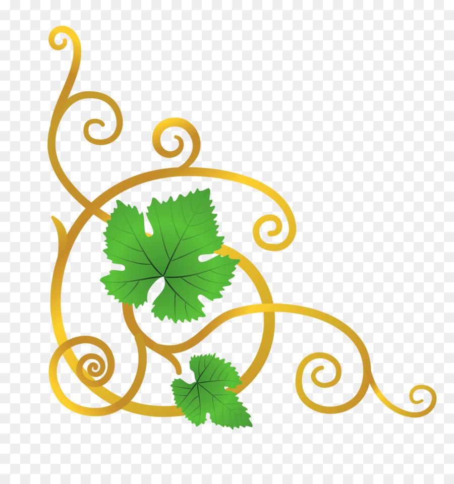 Виноград Вектор clipart Common Grape Vine Clip art